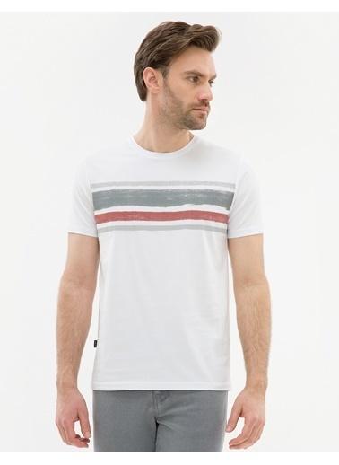 Pierre Cardin Tişört Taş